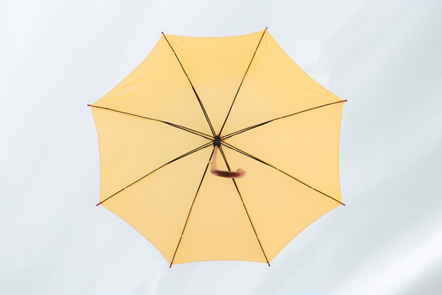 Printed and Branded Umbrellas