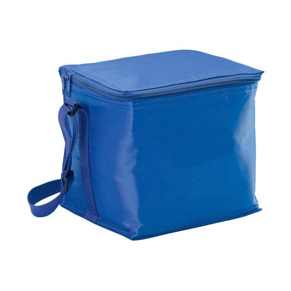 Small Cooler Bag